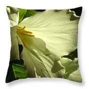 Morning Light - Trillium Throw Pillow