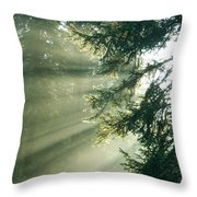 Morning Light IIi Throw Pillow