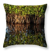 Morning Light Mangrove Reflection Throw Pillow