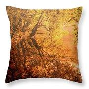 Morning Light Throw Pillow by Okan YILMAZ