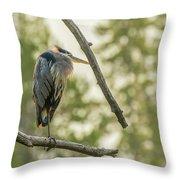 Morning Light On Great Blue Heron Throw Pillow