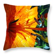 Morning Lily Throw Pillow