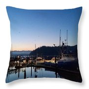 Morning Lines Throw Pillow