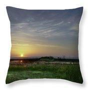 Morning Marsh Throw Pillow