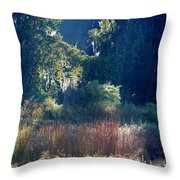Morning Marsh Sunshine Throw Pillow