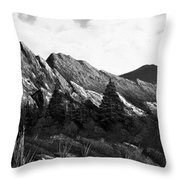 Morning Meadow Dew In Black And White Throw Pillow