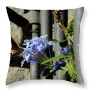 Morning Meal Throw Pillow