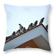 Morning Meet Throw Pillow