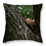 Morning Milling Throw Pillow