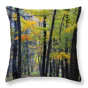 Morning Mist On The Path Throw Pillow
