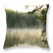 Morning Mists Throw Pillow