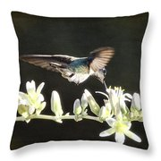 Morning Nectar Flyby  Throw Pillow