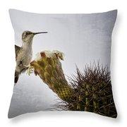 Morning Nectar  Throw Pillow