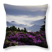Morning On Grassy Ridge Bald Throw Pillow by Rob Travis