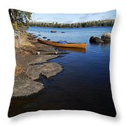 Morning On Hope Lake Throw Pillow by Larry Ricker