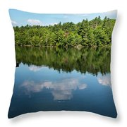 Morning On Lincoln Pond Throw Pillow