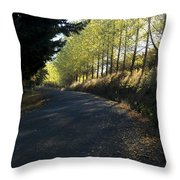 Morning Path Throw Pillow