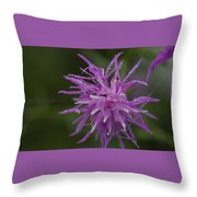 Morning Pearls Throw Pillow