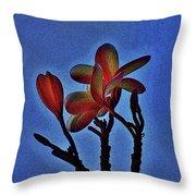 Morning Plumeria Throw Pillow