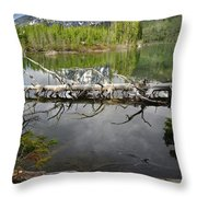 Morning Reflection Of Cathedral Group Throw Pillow
