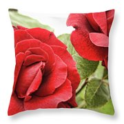 Morning Roses Throw Pillow
