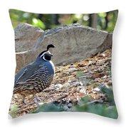 Morning Saunter  Throw Pillow