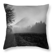 Morning Scene In Olympic National Park Throw Pillow