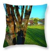 Morning Shadows In Waimea Throw Pillow