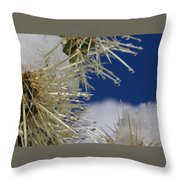 Morning Snow On Cactus Spines #1 Throw Pillow