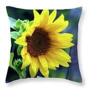 Morning Sunflower Throw Pillow
