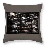 Morning Sunlight Through The Pines Throw Pillow