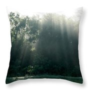 Morning Sunshine Throw Pillow