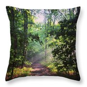 Morning Sunshine On The Appalachian Trail Throw Pillow