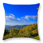 Early Fall Morning View Throw Pillow