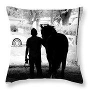 Morning Walker Throw Pillow