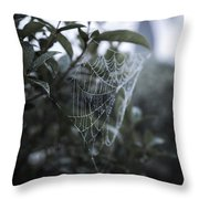 Morning Web With Dew Throw Pillow