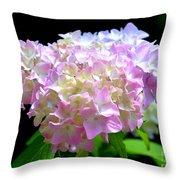 Morning Whisper - Hydrangea Throw Pillow