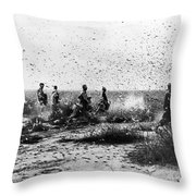 Morocco: Locusts, 1954 Throw Pillow