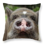 Morrison The Pig Throw Pillow