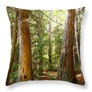 Morton Pines Throw Pillow
