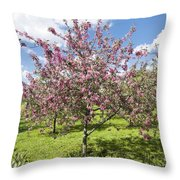 Moscow, Pink Cherries In Kolomenskoye Park Throw Pillow