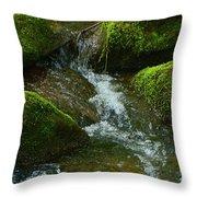 Mose On Rocks  Throw Pillow