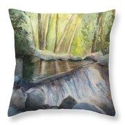 Mosquito Creek 3 Throw Pillow