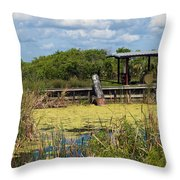 Mosquito Impoundement In Florida Throw Pillow