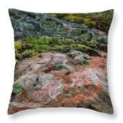 Moss And Lichen Abstract Throw Pillow