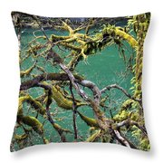 Moss And Trees Throw Pillow