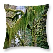 Moss At Munson Creek Throw Pillow
