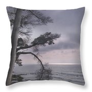 Moss Beach Throw Pillow