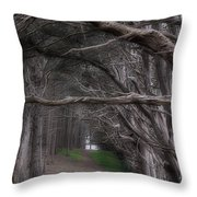 Moss Beach Trees 4191 Throw Pillow