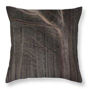 Moss Beach Trees Throw Pillow